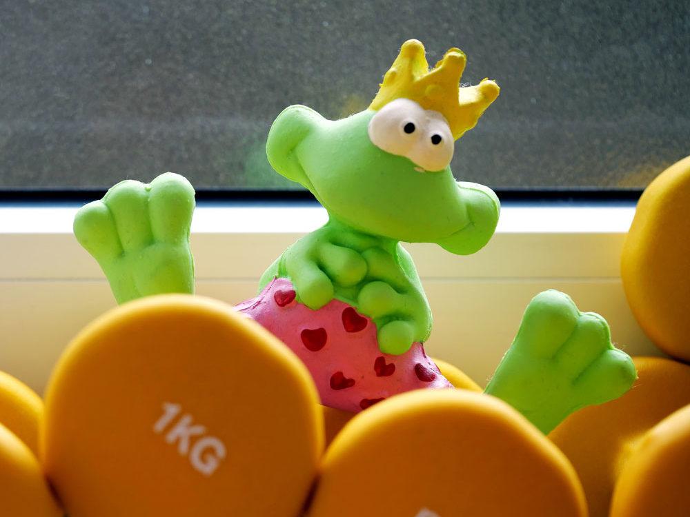 Froschkönig im Studio